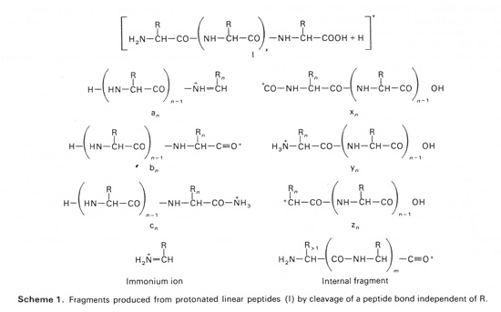ion series nomenclature